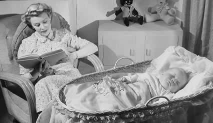 punaise de lit le traitement efficace 100 naturel. Black Bedroom Furniture Sets. Home Design Ideas